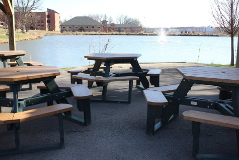 A breezy place to study by the pond behind IU Southeast.