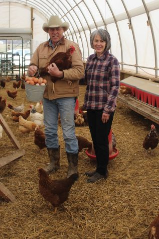 Steve and Jane Carr pose with one of their many free range chickens and a bucket full of freshly-harvested eggs inside their chicken coop.