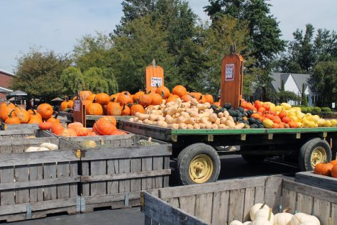 Mounds of pumpkins and squash wait to be purchased by visitors outside the Farm Market at Huber's Orchard and Winery.