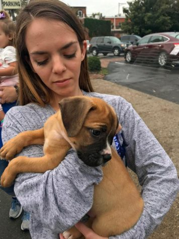 Joanna Smith holds a boxer puppy brought to Harvest Homecoming by Fat Heads Rescue.