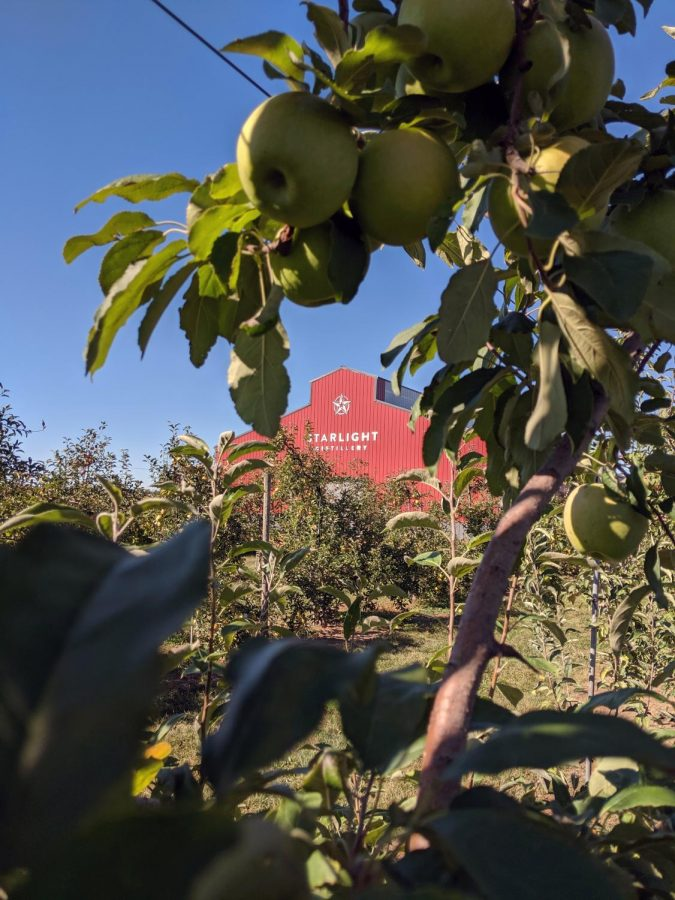 A view of the Starlight Distillery through a granny smith tree found at Huber's Orchard and Winery. Visitors can pick granny smith, Fuji and goldrush apples during the month of October.