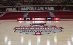 A closer look at the new IUS Athletics logo, part of the renovation to the Activities Building's basketball court.